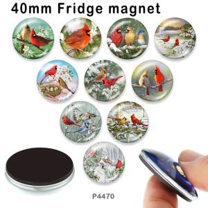 10 unids / lote productos de impresión de imágenes de vidrio para pájaros de varios tamaños imán de nevera cabujón