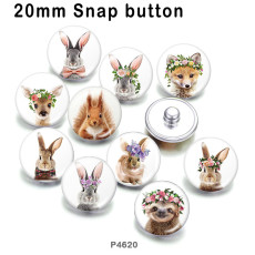 10 шт. / Лот, изделия из стекла для печати изображений животных различных размеров, магнит на холодильник, кабошон