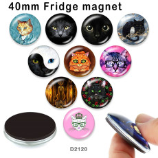10pcs/lot cat glass picture printing products of various sizes  Fridge magnet cabochon