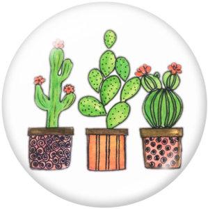 20MM Cactus Print Glasschnappknöpfe