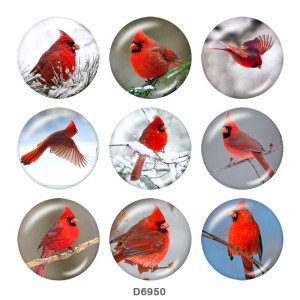 20MM   bird   Print   glass  snaps buttons