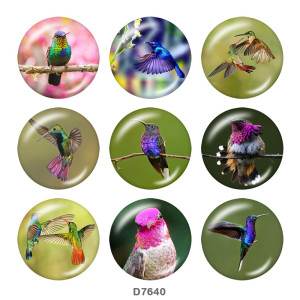 20MM  Hummingbird    Print   glass  snaps buttons