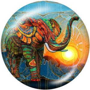 20MM  Elephant   Print   glass  snaps buttons