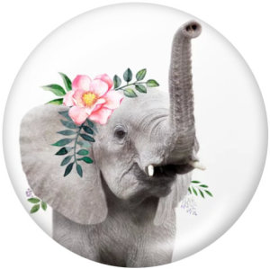 20MM  Elephant   Cat  Print   glass  snaps buttons