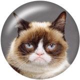 20MM   Cat   Print   glass  snaps buttons