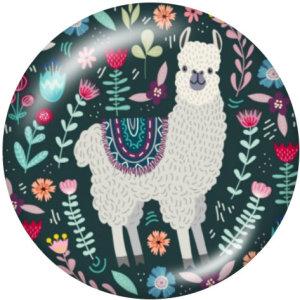 20MM Alpaca Print Glasschnappknöpfe