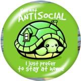 20MM Cartoon Schildkröte Druck Glas Druckknöpfe