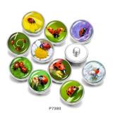 20MM昆虫プリントガラススナップボタン