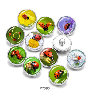 Painted metal 20mm snap buttons  insect  Print