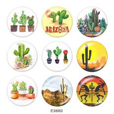 Окрашенный металл Окрашенный металл 20-миллиметровые кнопки Кнопки с изображением кактуса
