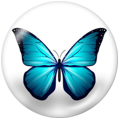 Boutons pression 20 mm en métal peint papillon Imprimer