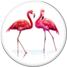 Painted metal 20mm snap buttons  Flamingo LOVE Print