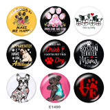 Painted metal 20mm snap buttons   Dog  Print