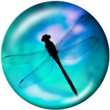 Painted metal 20mm snap buttons  dragonfly  Print
