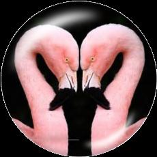 Boutons pression 20 mm en métal peint Flamingo LOVE Print