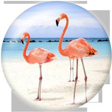 Boutons pression 20 mm en métal peint Flamingo Print Beach Ocean LOVE