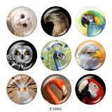 Boutons pression 20 mm en métal peint Owl Flamingo Print