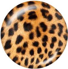Boutons pression 20 mm en métal peint Imprimé léopard