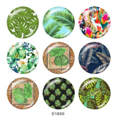 Painted metal 20mm snap buttons   Botany   Print