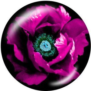Plantar flores El soporte para teléfono móvil Tomas de teléfono pintadas con una base estampada en blanco o negro