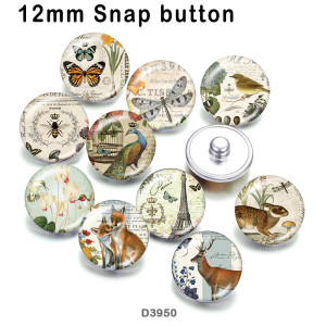 10pcs/lot  Butterfly  Dragonfly   glass  picture printing products of various sizes  Fridge magnet cabochon