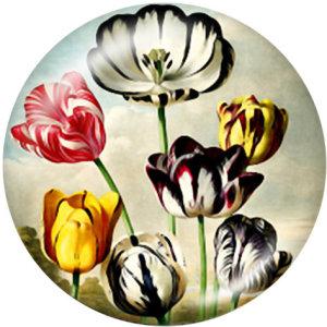Botones a presión de vidrio con estampado de flores de conejo y pájaro de 20 mm