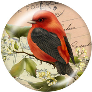 20ММ птица Стрекоза корона Принт стеклянные кнопки пуговицы