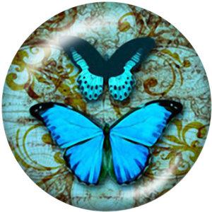 Стеклянные кнопки с принтом Butterfly Dragonfly Pow 20 мм