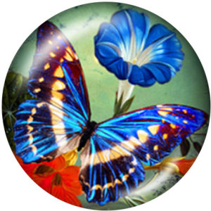 Botones a presión de vidrio con estampado de amor de mariposa de 20 mm