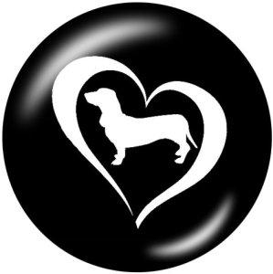 Boutons pressions en verre imprimé chat noir et blanc 20MM chien