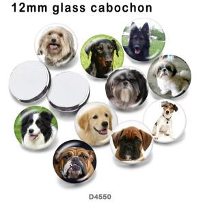 10pcs / lot Hundeglasbilddruckprodukte in verschiedenen Größen Kühlschrankmagnet Cabochon