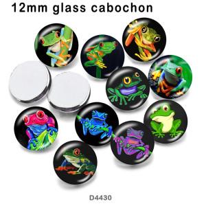 10pcs / lot Froschglasbilddruckprodukte in verschiedenen Größen Kühlschrankmagnet Cabochon
