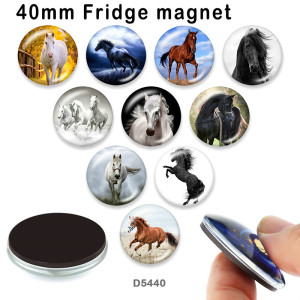 10pcs/lot  Horse  glass picture printing products of various sizes  Fridge magnet cabochon