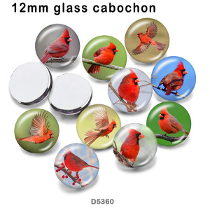 10pcs/lot  bird  glass picture printing products of various sizes  Fridge magnet cabochon