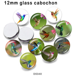10pcs/lot  Hummingbird  glass picture printing products of various sizes  Fridge magnet cabochon