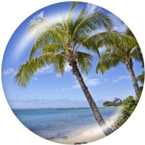 20MM   Beach Ocean   Print   glass  snaps buttons