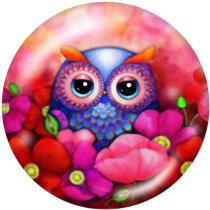Painted metal snaps 20mm  charms  Elves  Owl  Cartoon  Print