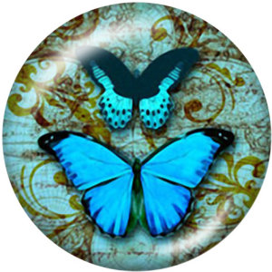 Painted metal snaps 20mm  charms  Butterfly  Dragonfly  pow   Print