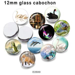 10 шт. / Лот кошка белый лебедь стеклянная продукция для печати изображений различных размеров магнит на холодильник кабошон