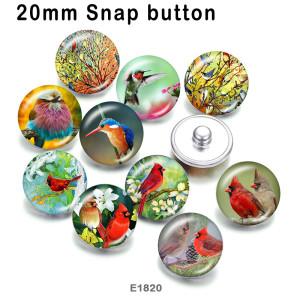 10個/ロットさまざまなサイズのハチドリ鳥ガラス画像印刷製品冷蔵庫用マグネットカボション
