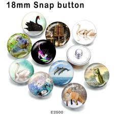 10pcs / lot Cat White Swan Glasbilddruckprodukte in verschiedenen Größen Kühlschrankmagnet Cabochon