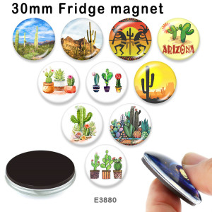 10 pcs/lot produits d'impression d'image en verre de cactus de différentes tailles cabochon d'aimant de réfrigérateur