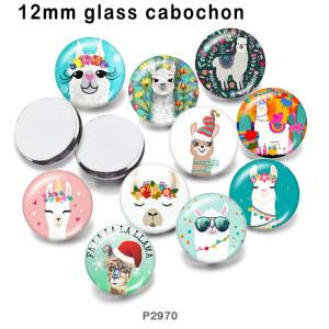 10 pcs/lot produits d'impression d'image en verre d'alpaga de différentes tailles cabochon d'aimant de réfrigérateur