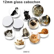 10 ピース/ロット様々なサイズの猫ガラス絵の印刷製品冷蔵庫マグネットカボション