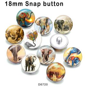 10pcs / lot Elefant-Glasbilddruckprodukte in verschiedenen Größen Kühlschrankmagnet Cabochon