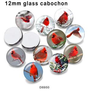 10pcs / lot Kardinalvogelglasbilddruckprodukte in verschiedenen Größen Kühlschrankmagnet Cabochon
