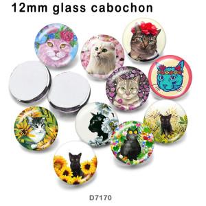 10pcs / lot Katzenglasbilddruckprodukte in verschiedenen Größen Kühlschrankmagnet Cabochon
