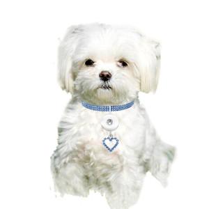 Nouveaux produits pour animaux de compagnie, accessoires élastiques pour chats et chiens d'amour, colliers pour animaux de compagnie pour 1 bijoux à bouton-pression de 18 et 20 mm