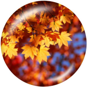 Botones a presión de 20 mm de metal pintado Acción de Gracias