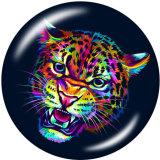 20MM tigre loup Deer Alpaga Print boutons pressions en verre